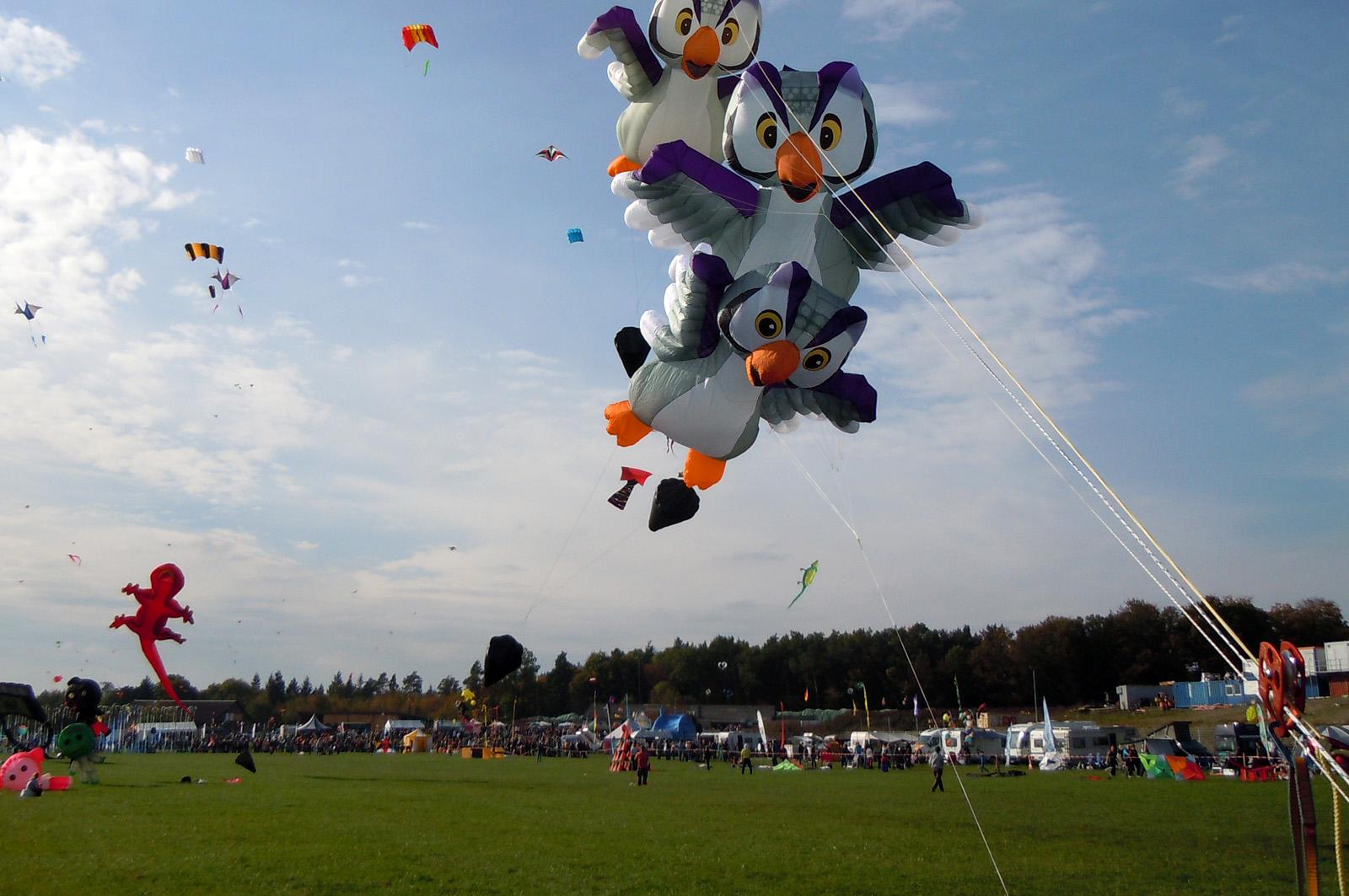 20141011_drachenfest